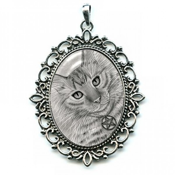 Cat Cameo Necklace Purrfect Page of Pentacles, Cat Drawing