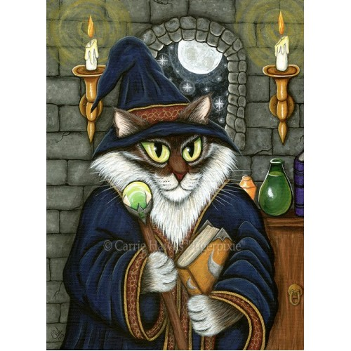 LE Canvas - Merlin The Magician