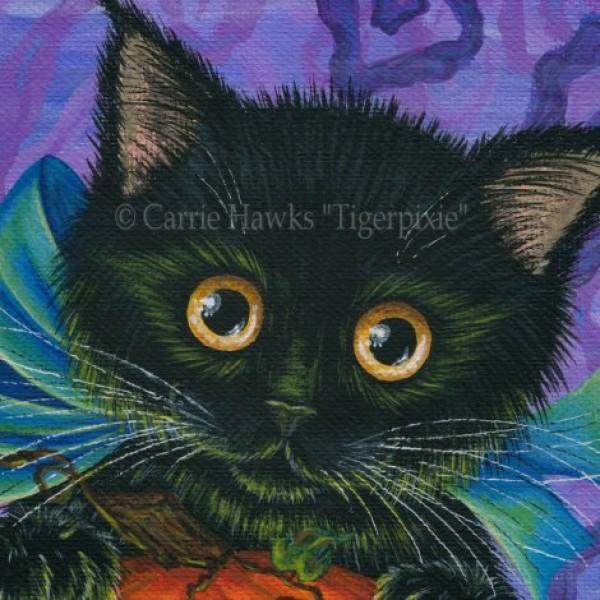 Halloween Black Kitten Jack O Lantern Pumpkin Cute Black
