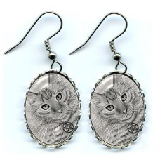 Earrings - Purrfect Page of Pentacles