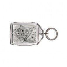 Keychain - Purrfect Page of Pentacles
