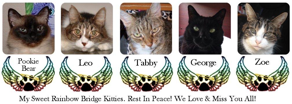 Tigerpixie's Rainbow Bridge Cats, Pookie Bear, Leo, Tabby, George and Zoe, Cat Artist Carrie Hawks' RIP Kitties